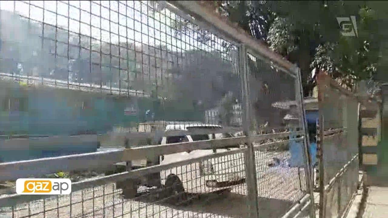 Morador da ZN reclama de poda clandestina