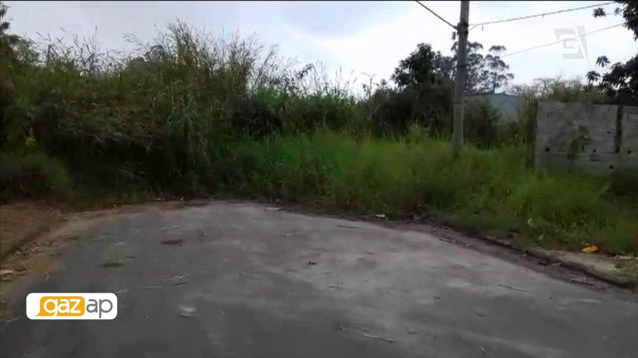 Mato alto em calçada de Itaquá